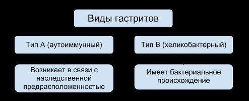 схема видов гастрита