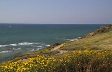 Средиземное море в Израиле